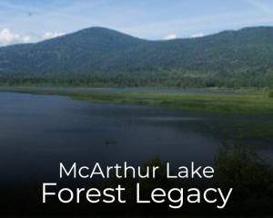 McArthur Lake Forest Legacy