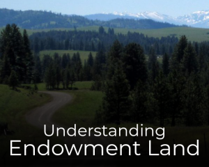 Understanding Endowment Land