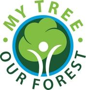 my-tree-logo